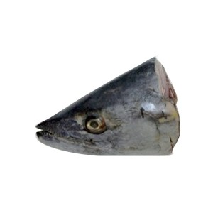 King Fish Head / Seer Fish Head / Surmai Fish Head